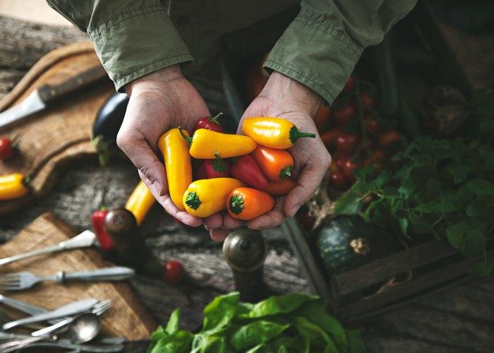 The Top Farm To Table Restaurants